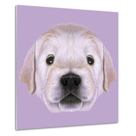 Illustrated Portrait of Golden Retriever Puppy-ant_art19-Metal Print