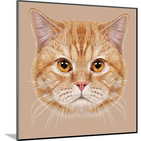 Illustration of Portrait British Short Hair Cat. Cute Orange Domestic Cat with Copper Eyes.-ant_art19-Mounted Art Print