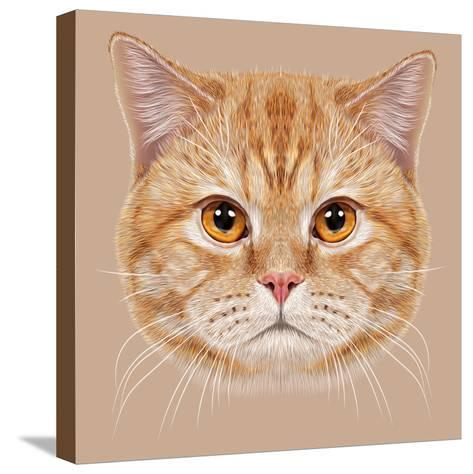 Illustration of Portrait British Short Hair Cat. Cute Orange Domestic Cat with Copper Eyes.-ant_art19-Stretched Canvas Print