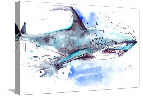 Shark-okalinichenko-Stretched Canvas Print