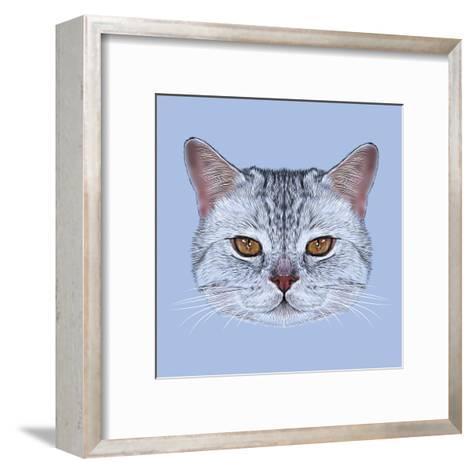 Illustrative Portrait of Scottish Straight Cat. Cute Domestic Tabby Cat with Orange Eyes.-ant_art19-Framed Art Print