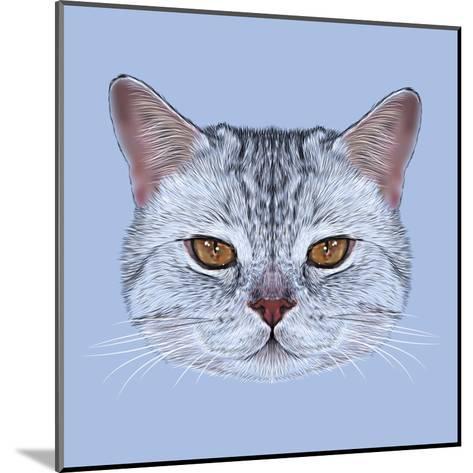 Illustrative Portrait of Scottish Straight Cat. Cute Domestic Tabby Cat with Orange Eyes.-ant_art19-Mounted Art Print