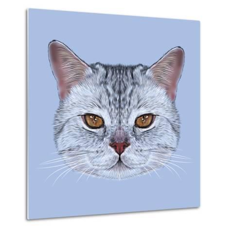 Illustrative Portrait of Scottish Straight Cat. Cute Domestic Tabby Cat with Orange Eyes.-ant_art19-Metal Print