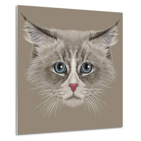 Illustrative Portrait of Siberian Cat. Cute Domestic Colour Point Cat with Blue Eyes.-ant_art19-Metal Print