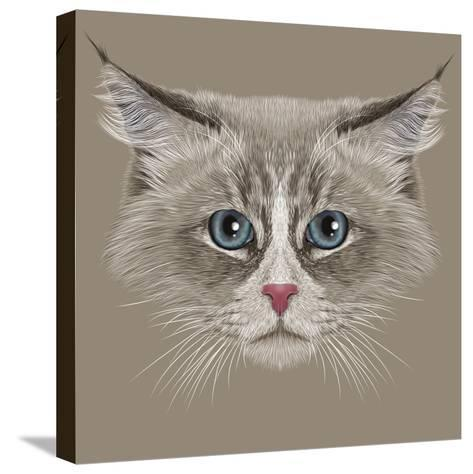 Illustrative Portrait of Siberian Cat. Cute Domestic Colour Point Cat with Blue Eyes.-ant_art19-Stretched Canvas Print