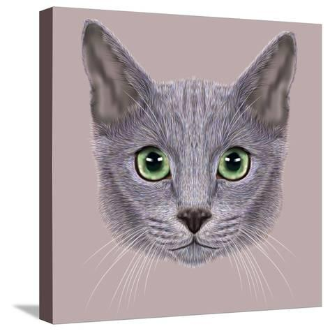 Illustration of Portrait of Russian Blue Cat. Cute Domestic Cat with Green Eyes.-ant_art19-Stretched Canvas Print