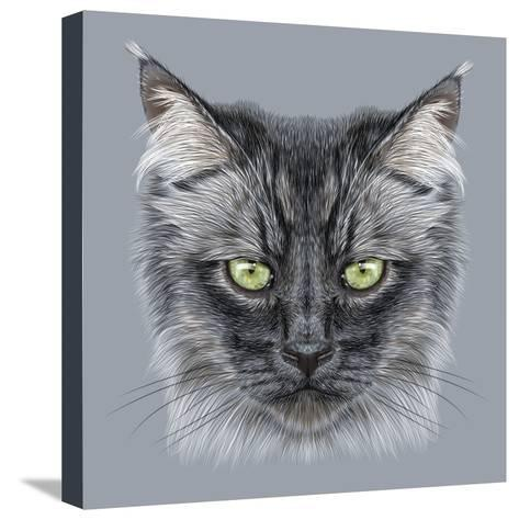 Illustration Portrait of Domestic Cat. Cute Black Cat with Green Eyes.-ant_art19-Stretched Canvas Print