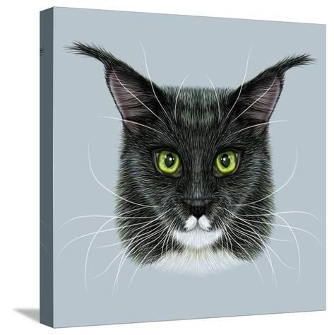 Vector Illustrative Portrait of Maine Coon. Cute Bi-Colour Domestic Cat with Green Eyes.-ant_art19-Stretched Canvas Print