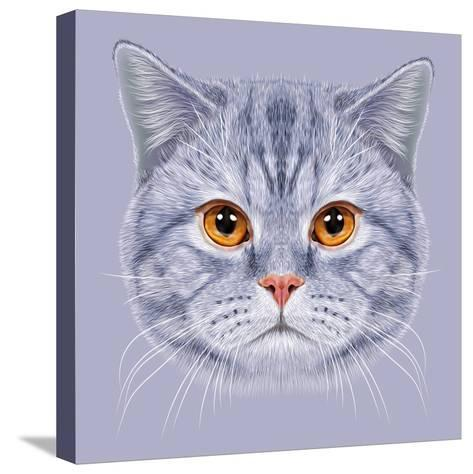 Illustration of Portrait British Short Hair Cat. Cute Grey Tabby Domestic Cat with Orange Eyes.-ant_art19-Stretched Canvas Print