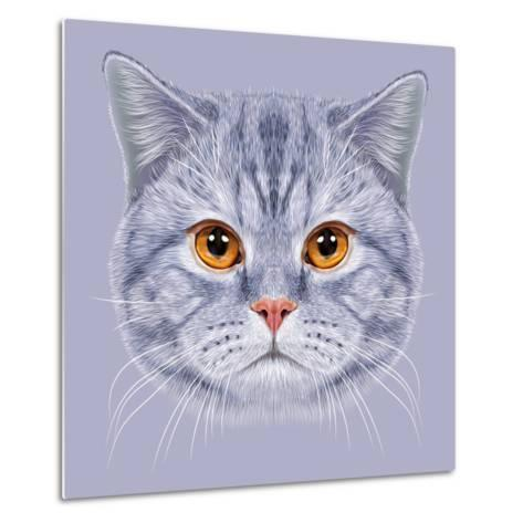 Illustration of Portrait British Short Hair Cat. Cute Grey Tabby Domestic Cat with Orange Eyes.-ant_art19-Metal Print