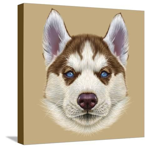 Illustrative Portrait of Husky Puppy. Cute Portrait of Young Copper Red Bi-Colour Dog with Pale Blu-ant_art19-Stretched Canvas Print