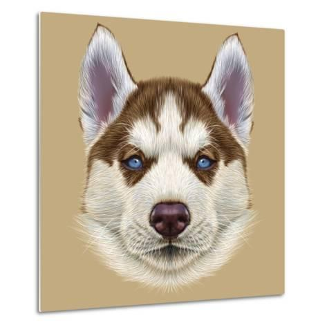 Illustrative Portrait of Husky Puppy. Cute Portrait of Young Copper Red Bi-Colour Dog with Pale Blu-ant_art19-Metal Print