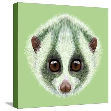 Illustrated Portrait of Slow Loris.-ant_art19-Stretched Canvas Print