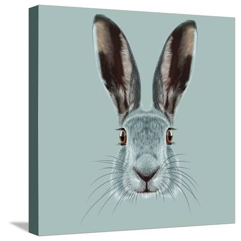 Illustrated Portrait of Hare.-ant_art19-Stretched Canvas Print