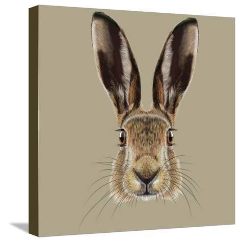 Illustrated Portrait of Hare-ant_art19-Stretched Canvas Print