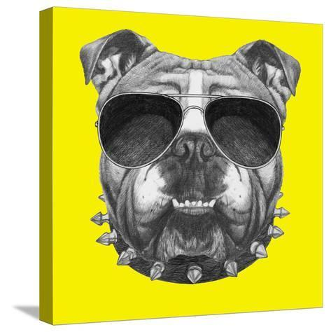 Original Drawing of English Bulldog with Collar and Sunglasses. Isolated on Colored Background-victoria_novak-Stretched Canvas Print