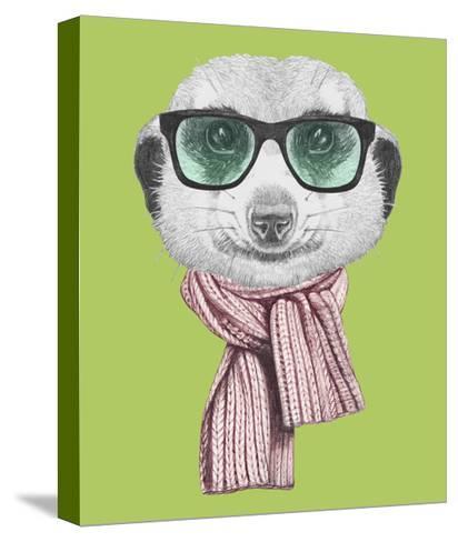 Portrait of Mongoose. Hand Drawn Illustration.-victoria_novak-Stretched Canvas Print