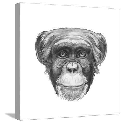 Original Drawing of Monkey. Isolated on White Background.-victoria_novak-Stretched Canvas Print