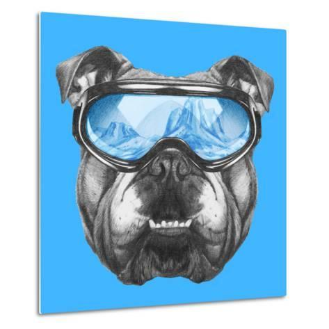 Portrait of English Bulldog with Ski Goggles. Hand Drawn Illustration.-victoria_novak-Metal Print