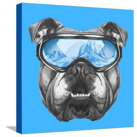 Portrait of English Bulldog with Ski Goggles. Hand Drawn Illustration.-victoria_novak-Stretched Canvas Print