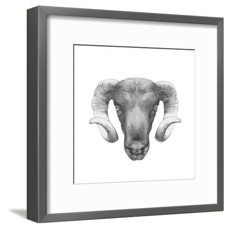 Original Drawing of Ram. Isolated on White Background-victoria_novak-Framed Art Print