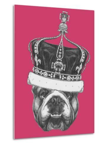 Original Drawing of English Bulldog with Crown. Isolated on Colored Background-victoria_novak-Metal Print