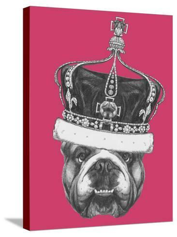 Original Drawing of English Bulldog with Crown. Isolated on Colored Background-victoria_novak-Stretched Canvas Print