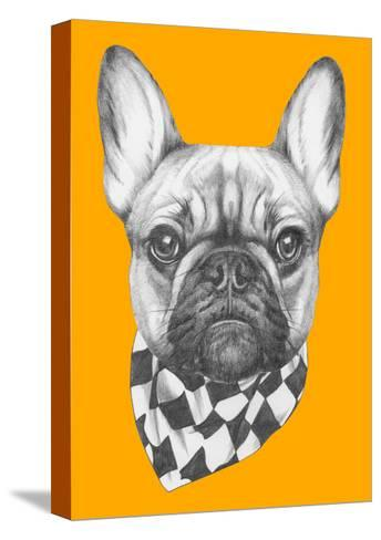 Original Drawing of French Bulldog with Scarf. Isolated on Colored Background-victoria_novak-Stretched Canvas Print