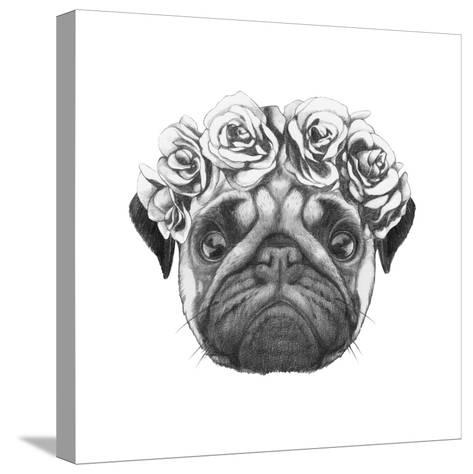 Original Drawing of Pug Dog with Floral Head Wreath. Isolated on White Background-victoria_novak-Stretched Canvas Print