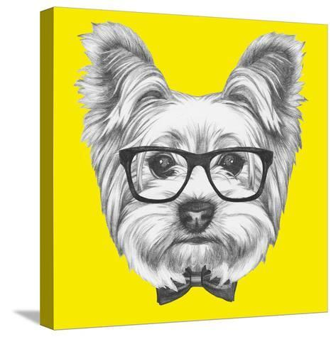 Portrait of Yorkshire Terrier Dog with Glasses and Bow Tie. Hand Drawn Illustration.-victoria_novak-Stretched Canvas Print