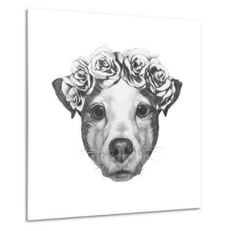 Original Drawing of Jack Russell with Floral Head Wreath. Isolated on White Background.-victoria_novak-Metal Print