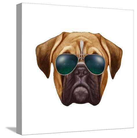Original Drawing of Boxer Dog with Sunglasses. Isolated on White Background.-victoria_novak-Stretched Canvas Print