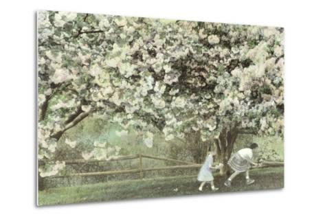 Under the Apple Blossom Tree-Betsy Cameron-Metal Print