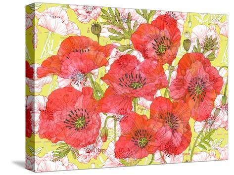 Red Romance Poppies, Group of Blooms and Floral Poppy-Robin Pickens-Stretched Canvas Print