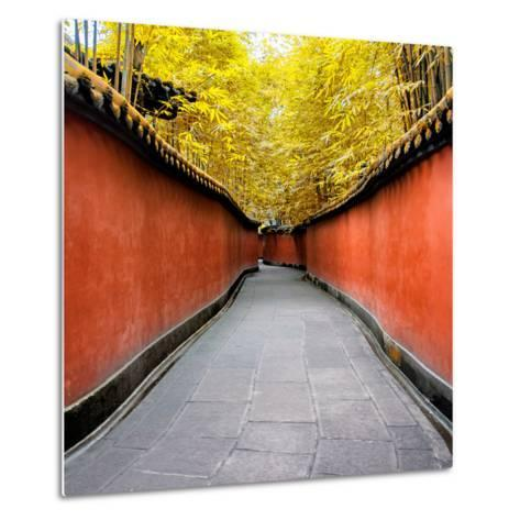 China 10MKm2 Collection - Alley Bamboo-Philippe Hugonnard-Metal Print