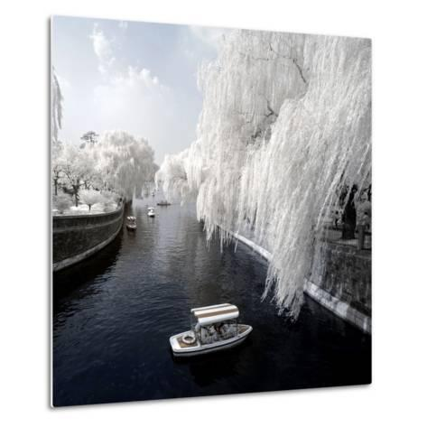 China 10MKm2 Collection - Another Look - Forbidden City-Philippe Hugonnard-Metal Print