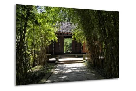 China 10MKm2 Collection - Bamboo Forest-Philippe Hugonnard-Metal Print