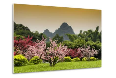 China 10MKm2 Collection - Beautiful Asian Garden-Philippe Hugonnard-Metal Print
