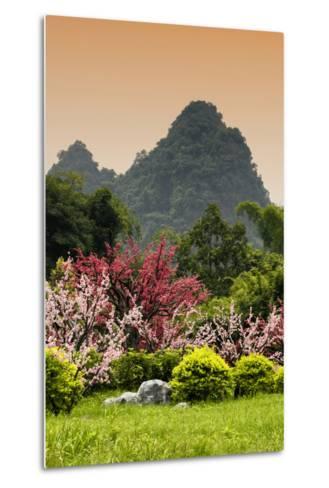 China 10MKm2 Collection - Beautiful Asian Garden-Philippe Hugonnard-Metal Print
