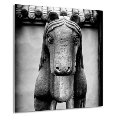 China 10MKm2 Collection - Horse Statue-Philippe Hugonnard-Metal Print