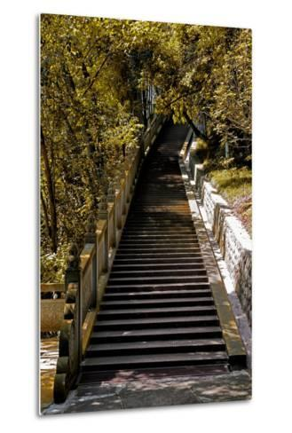 China 10MKm2 Collection - Stairway in the Forest-Philippe Hugonnard-Metal Print