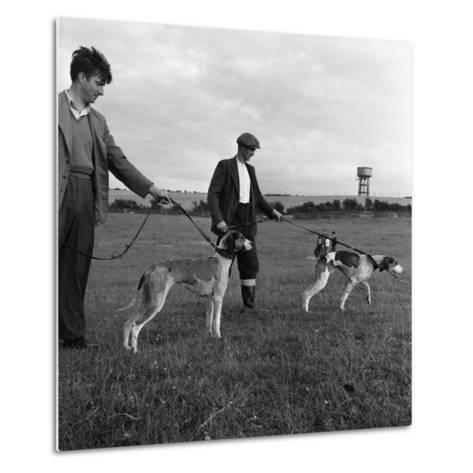 Hound Trailing, One of Cumbrias Oldest and Most Popular Sports, Keswick, 2nd July 1962-Michael Walters-Metal Print