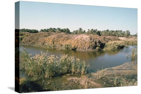 River Tigris by the Tower of Babel, Babylon, Iraq-Vivienne Sharp-Stretched Canvas Print
