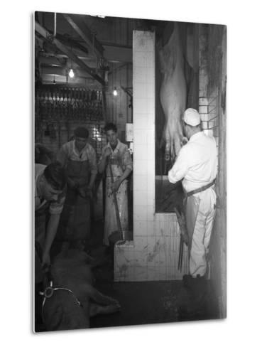 Butchery Factory, Rawmarsh, South Yorkshire, 1955-Michael Walters-Metal Print
