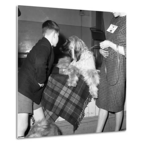 Child with an Afghan Hound at a Dog Show in Horden, County Durham, 1963-Michael Walters-Metal Print