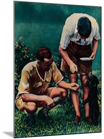 A Singapore Mascot of the Raf, 1940--Mounted Giclee Print