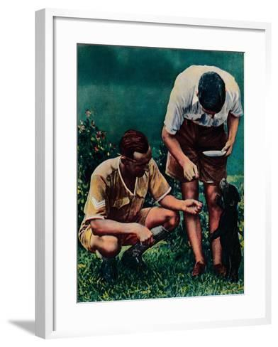 A Singapore Mascot of the Raf, 1940--Framed Art Print