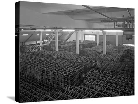 Warehouse Full of Crates of Bottles, Ward and Sons, Swinton, South Yorkshire, 1960-Michael Walters-Stretched Canvas Print