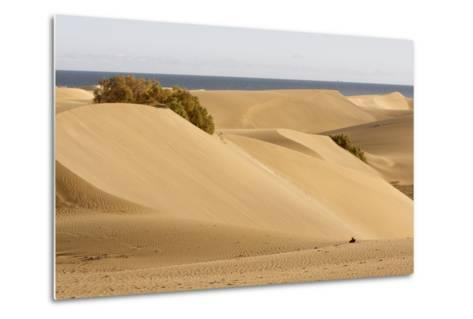 Maspalomas Sand Dunes, Gran Canaria, Canary Islands, Spain-Peter Thompson-Metal Print
