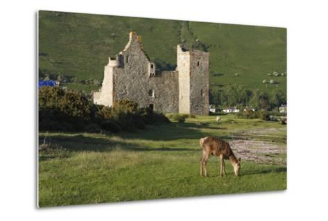 Lochranza Castle, Arran, North Ayrshire, Scotland-Peter Thompson-Metal Print